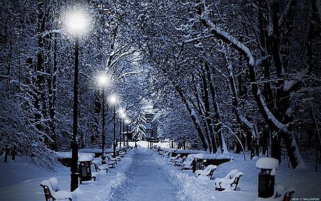 New England Night Magic